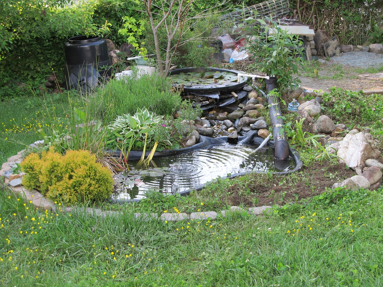 Cheap Backyard Additions to Raise Your Property Value